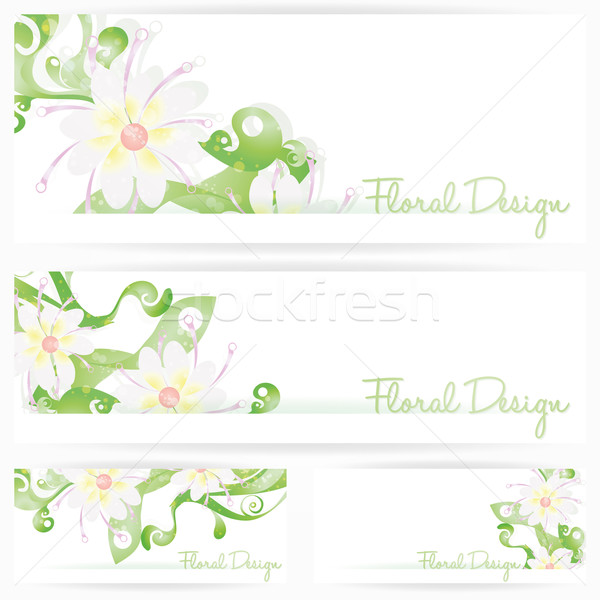 Flower vector background brochure. Floral cards Stock photo © Luppload
