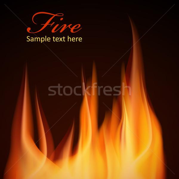 Tűz terv jpg illustrator eps10 vektor Stock fotó © Luppload
