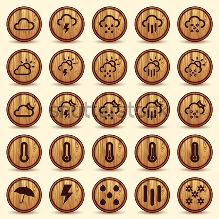 Social network icons. Wood Texture Buttons Stock photo © Luppload