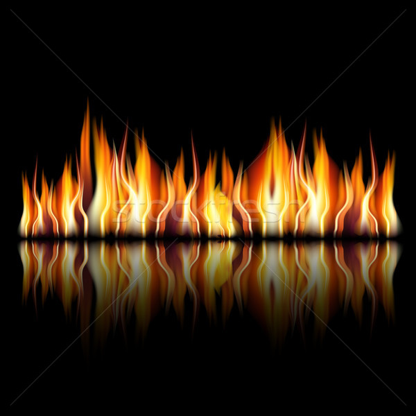 Burning fire flame on black background Stock photo © Luppload