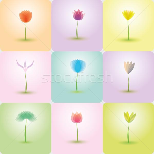 Virágok ikon gyűjtemény természet magas döntés kép Stock fotó © Luppload