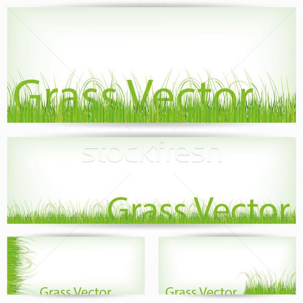 зеленая трава набор изолированный белый иллюстрированный иллюстратор Сток-фото © Luppload
