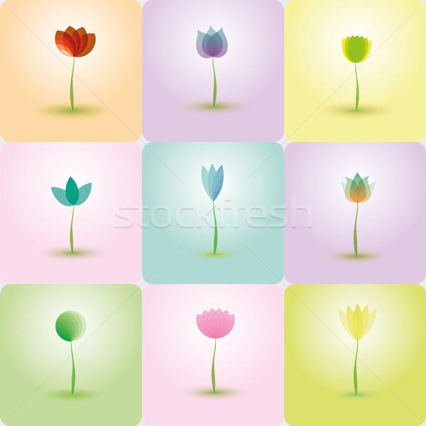 Színes virágok absztrakt ikonok brosúra illusztrált Stock fotó © Luppload