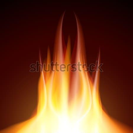 火災 難 黒 jpg イラストレーター ストックフォト © Luppload