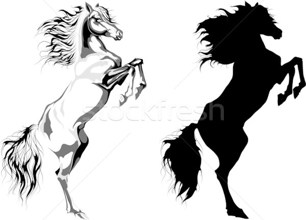 Rear horse silhouettes Stock photo © LVJONOK