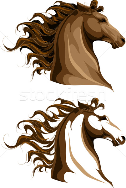 Kettő lovak ló farm állat vektor Stock fotó © LVJONOK
