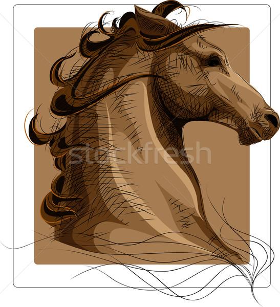 Ló fej vektor kép színes kép független Stock fotó © LVJONOK