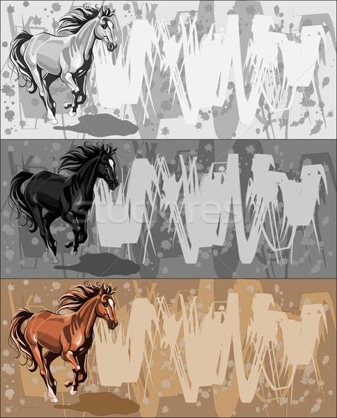 バナー を実行して 馬 グランジ ベクトル バナー ストックフォト © LVJONOK