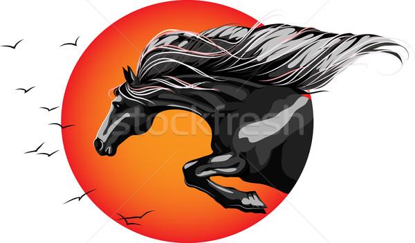 Foto stock: Liberdade · saltando · cavalo · pôr · do · sol · fundo · preto