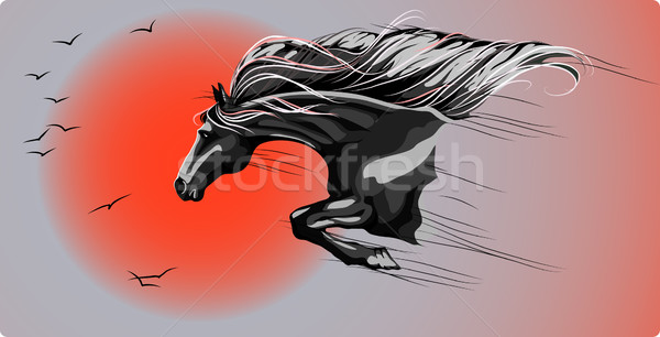 Ugrás szabadság ugrik ló naplemente háttér Stock fotó © LVJONOK