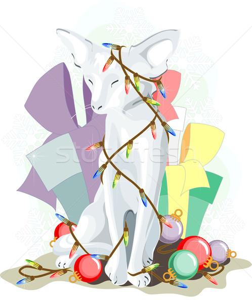 Nowy rok 2011 biały kot posiedzenia lampy Zdjęcia stock © LVJONOK