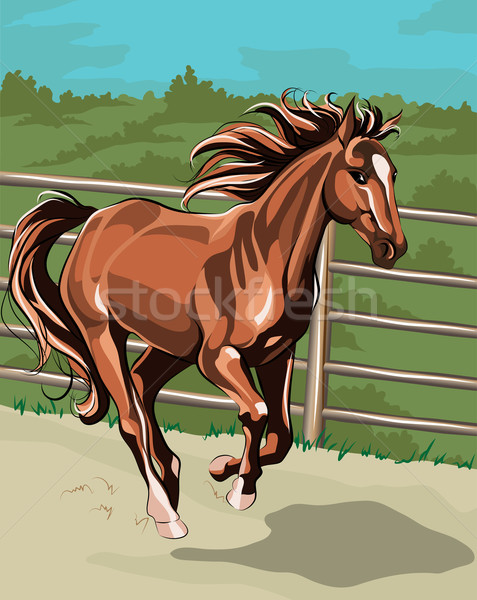 ストックフォト: を実行して · 馬 · 空 · 背景 · ジャンプ · 速度