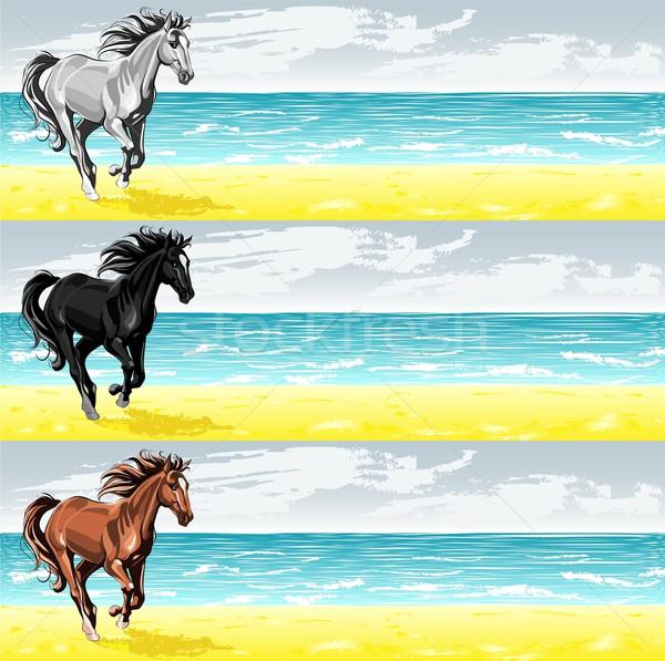 Bannerek fut ló vektor tenger szalag Stock fotó © LVJONOK