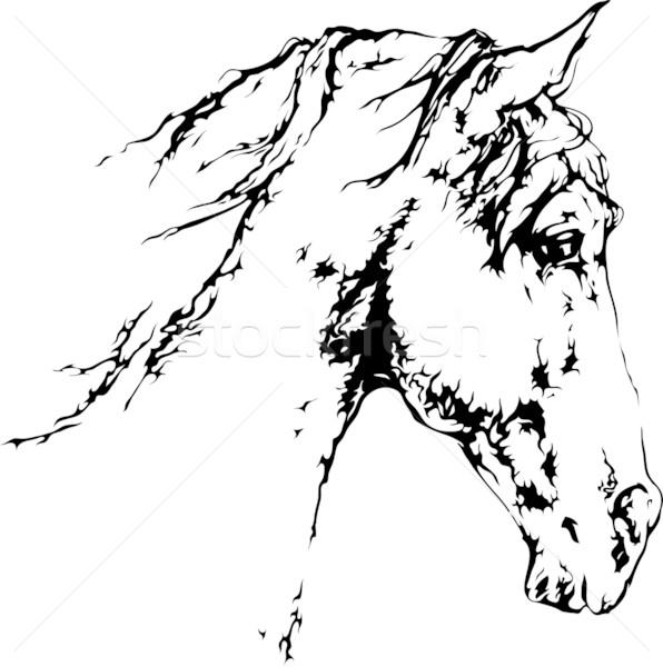 Ló fej sziluett fekete nem gradiensek Stock fotó © LVJONOK