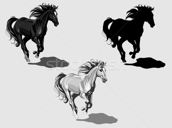 Stock photo: Three running horses