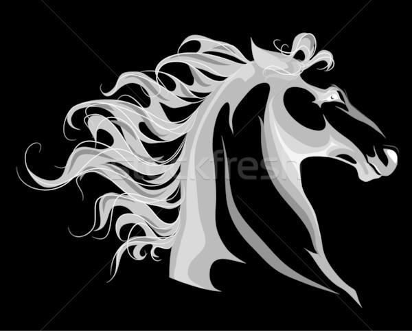 Paard hoofd negatieve lang boerderij zwarte Stockfoto © LVJONOK
