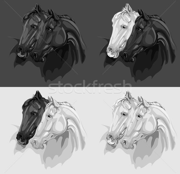 Szett monokróm lovak illusztrációk vektor különböző Stock fotó © LVJONOK