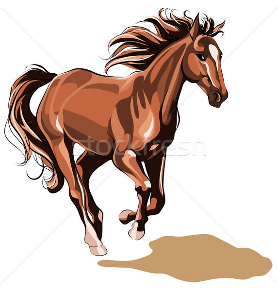 ストックフォト: を実行して · 馬 · ジャンプ · シルエット · 夢 · プロファイル