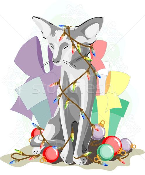 2011 灰色の猫 座って その他 装飾 ストックフォト © LVJONOK