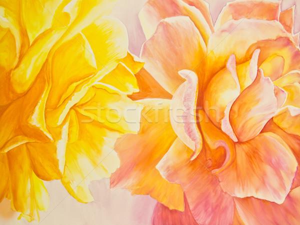 黄色 桃 バラ バラ 明るい ストックフォト © LynneAlbright
