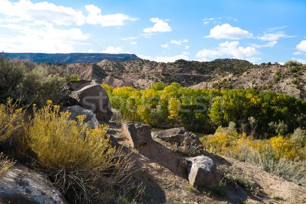Rocky New Mexico Vista Stock photo © LynneAlbright