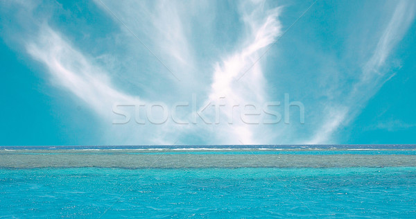 Reefs Stock photo © lypnyk2