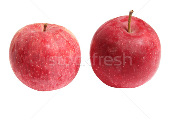 Manzanas blanco dos jugoso aislado frescos Foto stock © lypnyk2
