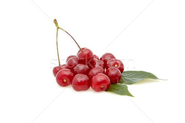 Cherries  isolated on a whiteground. Stock photo © lypnyk2