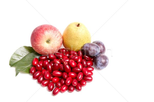 Splendid autumn fruits on a white. Stock photo © lypnyk2