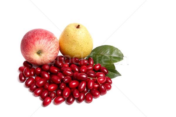 Ripe,fresh autumn fruits on a white. Stock photo © lypnyk2