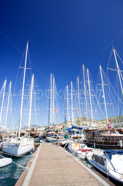 Yachts on the harbor next to quay. Stock photo © lypnyk2