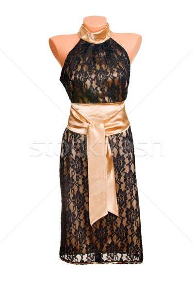 Chic luxury  dress. Stock photo © lypnyk2