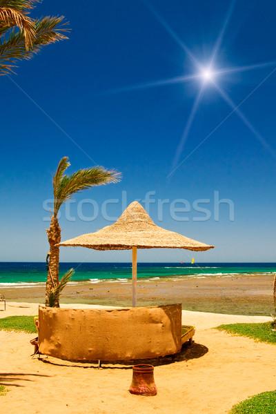 Palmiye güneş şemsiyesi deniz mavi gökyüzü güzel tropikal plaj Stok fotoğraf © lypnyk2