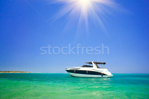 Small luxurious powerboat. Stock photo © lypnyk2