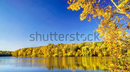 Mágikus ősz csendes tavacska csodálatos kilátás Stock fotó © lypnyk2