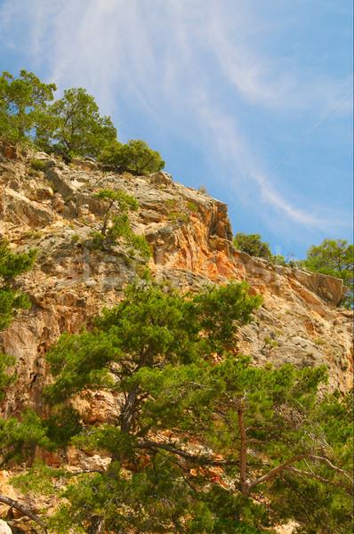 Blue sky and splendid mountains. Stock photo © lypnyk2