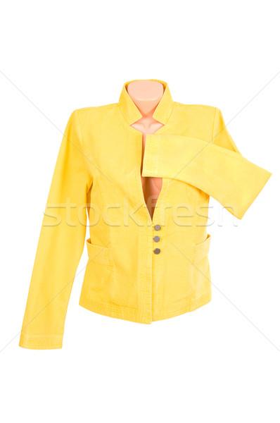 Classy stylish jacket on a white. Stock photo © lypnyk2