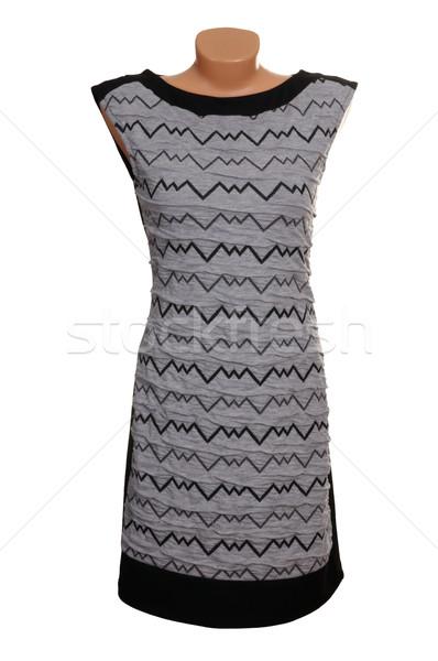 シック 高級 グレー ドレス 現代 スタイリッシュ ストックフォト © lypnyk2