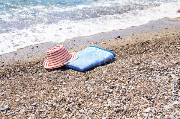 Türkiz kalap törölköző gyönyörű rózsaszín szalmakalap Stock fotó © lypnyk2