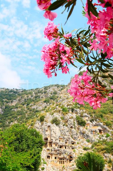 Antik építészet Törökország ősi magas hegyek Stock fotó © lypnyk2