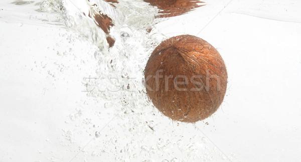 Shaggy coconut in fresh water. Stock photo © lypnyk2