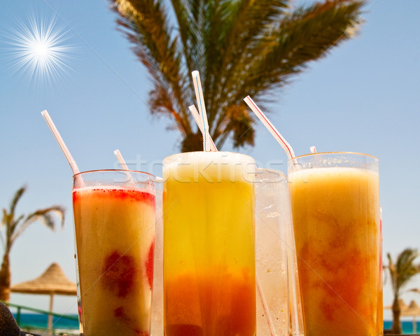 Chilly cocktails with small pipes and tall palm behind its. Stock photo © lypnyk2