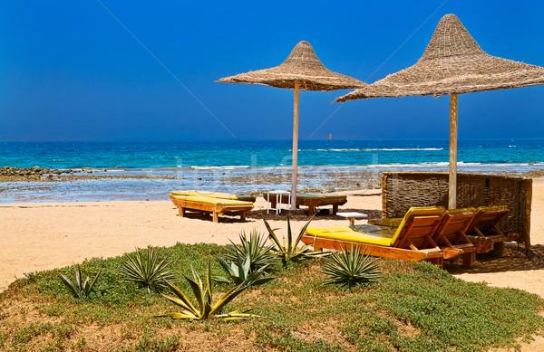 Spiaggia tropicali paese incredibile aiuola cielo Foto d'archivio © lypnyk2