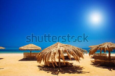Meraviglioso spiaggia Egitto incredibile golfo cielo blu Foto d'archivio © lypnyk2