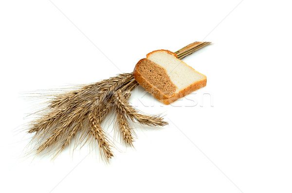Spike and bit of bread. Stock photo © lypnyk2