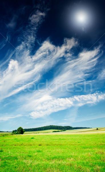 Stock fotó: Nyár · tájkép · csodálatos · derűs · legelő · kék · ég