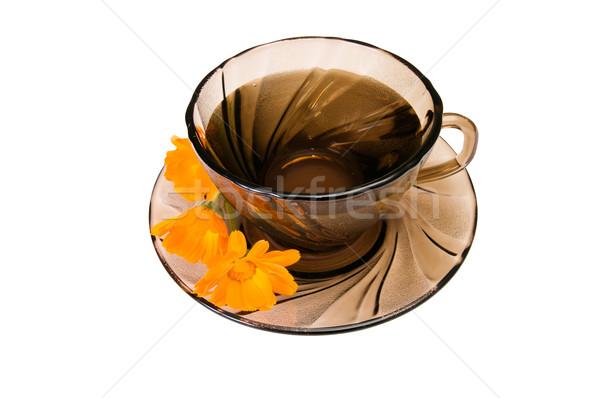 Cup of  fragrant tea on a white. Stock photo © lypnyk2