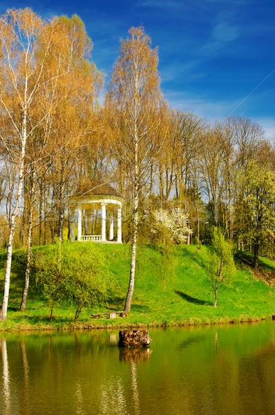 Primavera stagno meraviglioso nice acqua Foto d'archivio © lypnyk2