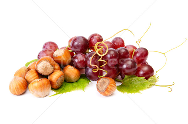 Ripe hazelnuts and juicy grapes on a white. Stock photo © lypnyk2
