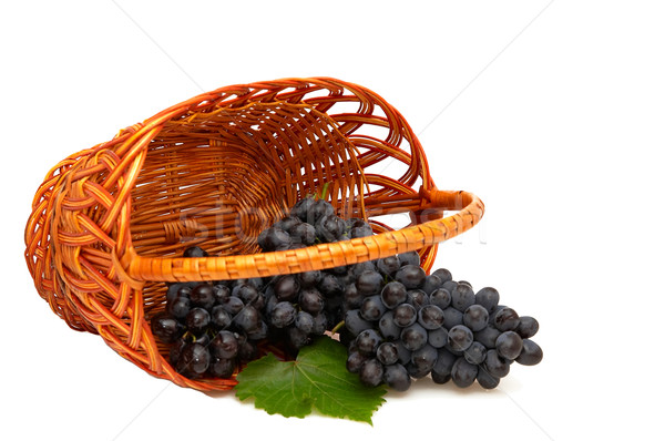 Stock photo: Bunches of grapes  in basket